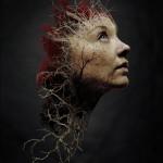 The Forest / Les sebevrahů