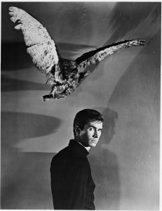 psycho2 anthony-perkins-in-psycho-(1960)-large-picture